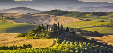 Wine emotion in Tuscany