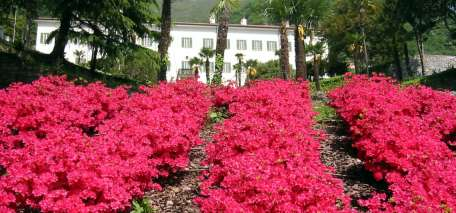 Most Romantic Gardens