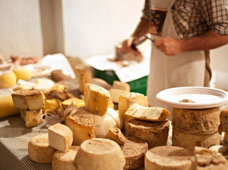 Tuscany's typical cheeses, delicacies for the palate