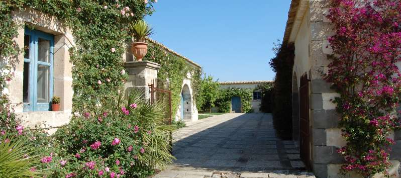 avenue of the typical villa masseria in Sicily