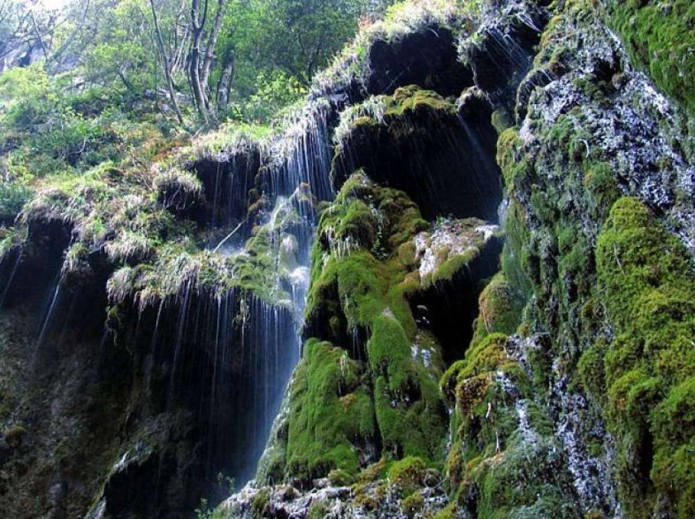 Valle delle Ferriere: a nature reserve in the heart of the